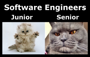 Junior vs Senior engineer
